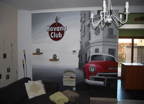 Prachtige muurschilderingen in opdracht! Alles kan!