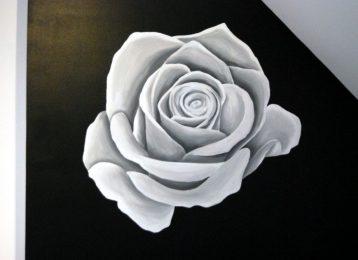 Muurschildering closeup van een witte roos op een zwarte muur