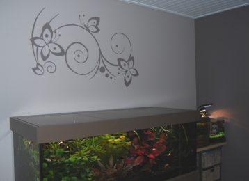 Muurschildering krullen met vlinders boven een aquarium