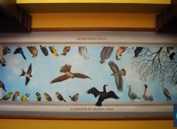 Plafondschildering van vele inheemse vogels