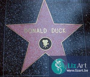 Donald Duck Star - Walk of Fame